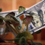 Федеральный Фонд дольщиков не признал миллиарды из Ленобласти